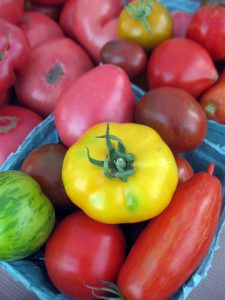 boxes of mixed heirloom tomatoes